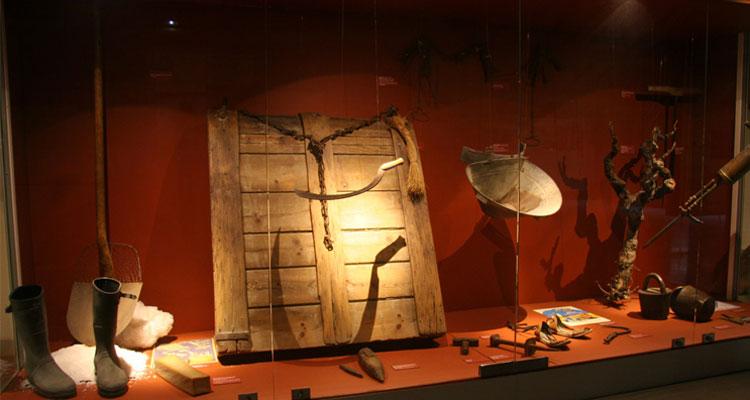 Exposition au musée de la Camargue